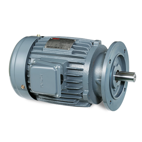 AC Induction Motor (IEC): AEVF Series
